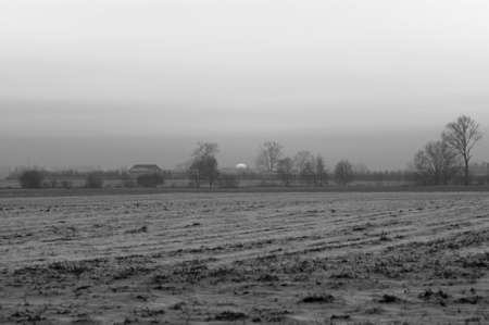 Winter west of the sun, blackly white picture