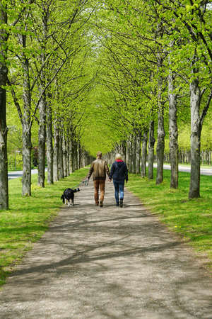 rear view of a young couple taking the dog for a walk