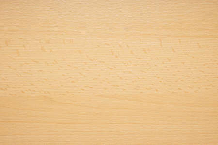 Photo for beechwood or beech wood background texture pattern - Royalty Free Image