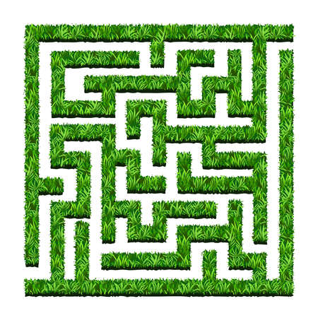 Ilustración de Maze of green bushes, labyrinth garden. Vector illustration. Isolated on white background - Imagen libre de derechos