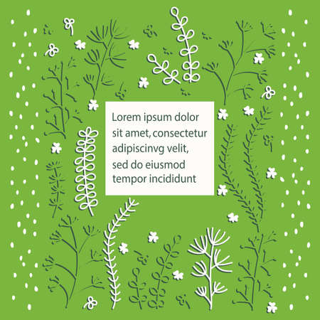 Illustration pour Floral vector template greeting card in a Scandinavian style . Vector Hand drawn frame with the contours of the herbal plants . Space for text. White, green. - image libre de droit