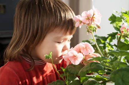 Little girl smelling spring flowers, kid feeling happiness,joyful people concept without spring allergy