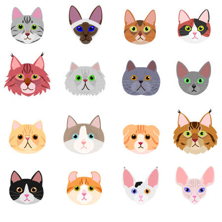 Ilustración de cat face set on white background - Imagen libre de derechos