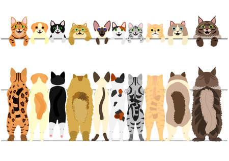 Ilustración de Standing cats front and back border set illustration. - Imagen libre de derechos