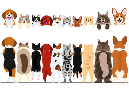 Illustration pour Standing small dogs and cats front and back border set illustration. - image libre de droit