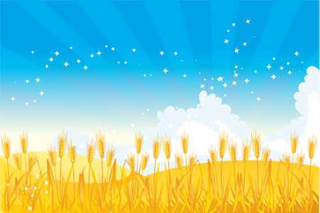 Illustration pour Wheat field illustrated  - image libre de droit