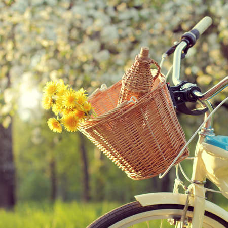 wicker bicycle basket with flowers and a bottle of drink on background of blooming apple trees / bike tour for spring picnic