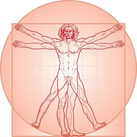 The Vitruvian man, or so called Leonardo da Vinci man. Detailed drawing. In Red.