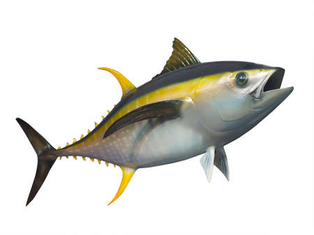 Foto de Stuffed Yellowfin tuna in fast motion, isolated - Imagen libre de derechos