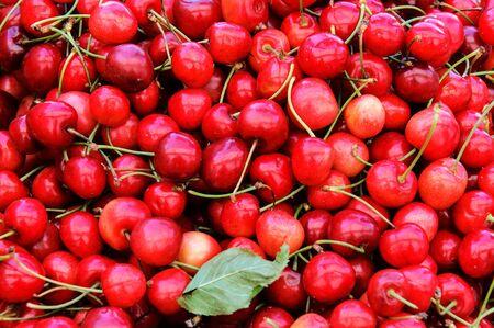 Cherries in the full frame