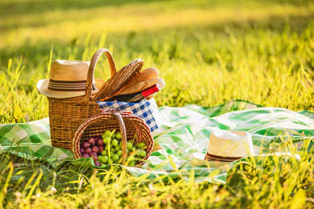 Foto per Picnic with wine and grapes in nature - Immagine Royalty Free