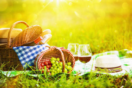 Photo pour Picnic with wine and grapes in nature. In the sunlight - image libre de droit