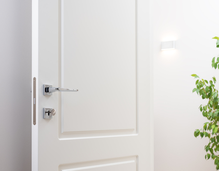 The open white interior doors. Modern chrome handle and lock with key. Wall lamp and green plant in the background