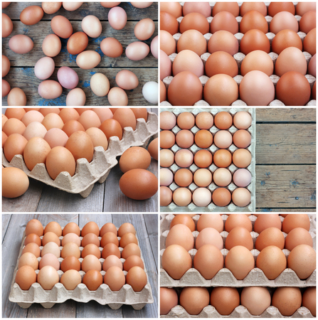 set of photos with chicken brown eggs in packing, the top view. Food, close up.の写真素材