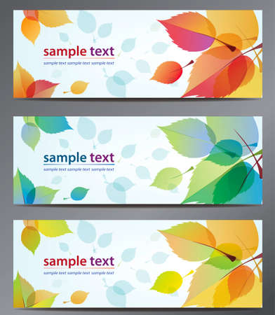 autumn leaves vector background brochure template. Set of floral cards のイラスト素材