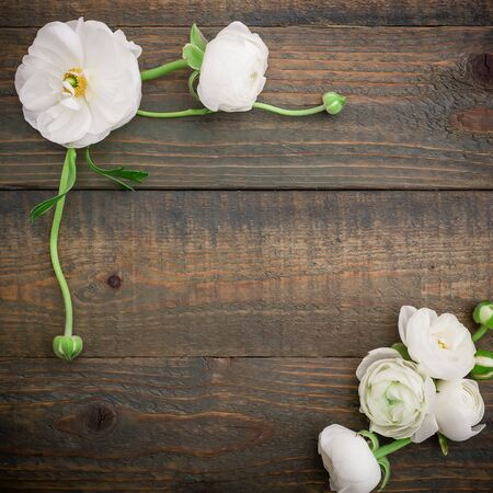 Photo pour Floral frame of white ranunculus on a wooden background. Flat lay, top view. Floral pattern - image libre de droit