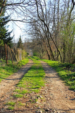Village road path way with green grass