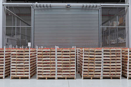 Foto per Crates of Tomatoes at Pallets in Warehouse - Immagine Royalty Free