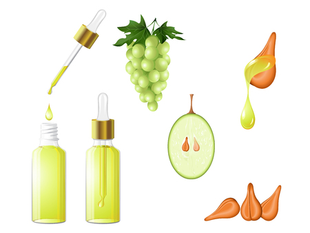 A grape seed oil in glass bottle dropper with the serum ,fruit ,seeds and a drop of oil. Hair care, face, hands and body. Aromatherapy, relaxation, Wellness centre, beauty salon. Vector EPS 10