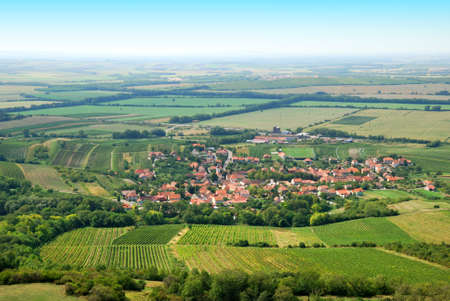 Fertile green vineyards and small village in summer