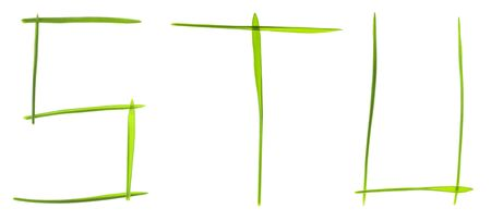 Ecological font. Letters made from grass blades isolated on white