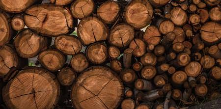 log pattern