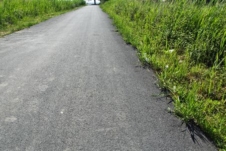Foto de A new asphalt road through which the grass comes out. Nature is a miracle. - Imagen libre de derechos
