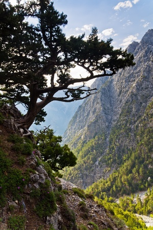 On the top of Samaria gorge, central part of Crete island