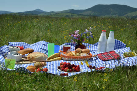 Close up of picnic with a delicious spread of fresh fruit, pastry, cheese on a plaid tablecloth with hills in background