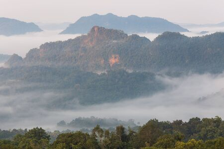 Morning mist at Doi Hua Mod, Tak Thailand. Doi Hua Mod is a mist that famous one of Umphang Wildlife Sanctuary