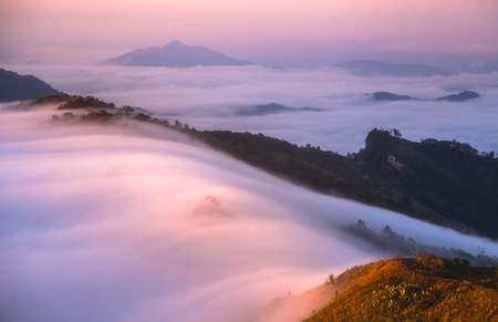 the mist at Phu Chi Fa in the morning chiang rai thailand