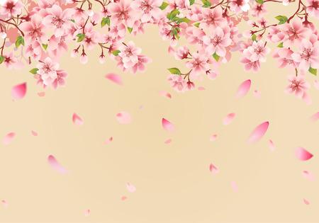Illustration pour Cherry blossom sakura on gold - image libre de droit