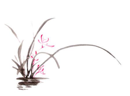 Photo pour ink orchid drawing - image libre de droit