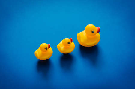 Photo for Yellow rubber duck mother leading her babies on blue background. Minimal mother day concept. - Royalty Free Image