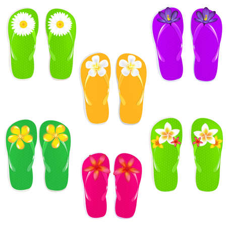 6 Flip Flops With Flowers, Isolated On White Background