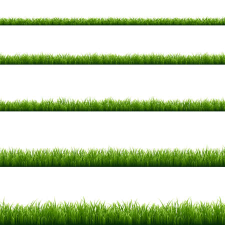 Illustration for Green Grass Big Set, Vector Illustration - Royalty Free Image