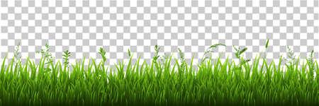 Illustration for Green Grass Border, Vector Illustration - Royalty Free Image