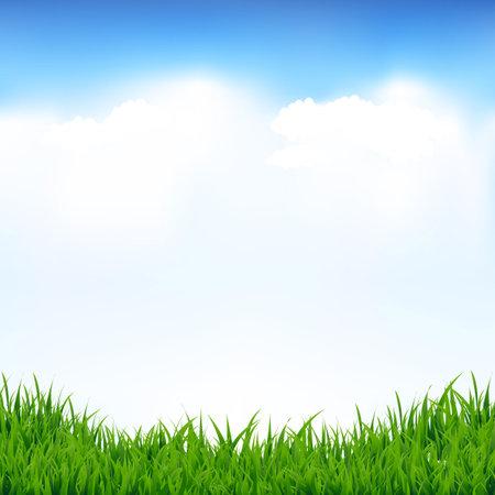 Illustration pour Blue Sky And Greeen Grass With Gradient Mesh, Vector Illustration - image libre de droit