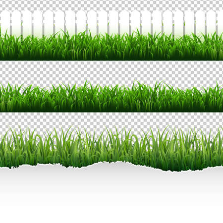 Illustration pour Grass Border Big Set With Gradient Mesh, Vector Illustration. - image libre de droit