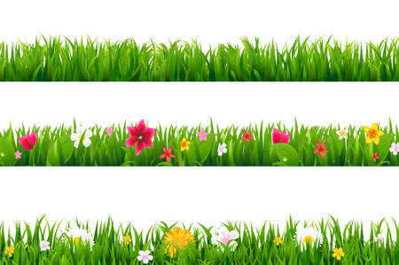 Illustration for Grass Borders Set With Gradient Mesh, Vector Illustration - Royalty Free Image
