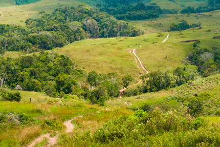 Trekking Path Through the Gran Sabana, Venezuela