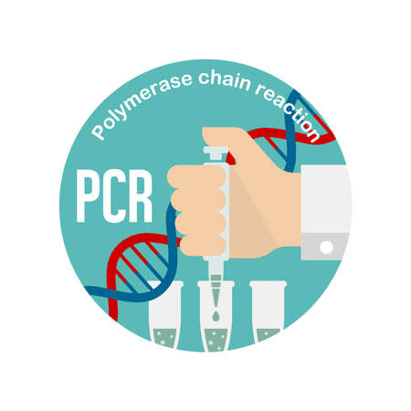PCR (Polymerase chain reaction) test circle banner illustration / Novel coronavirus
