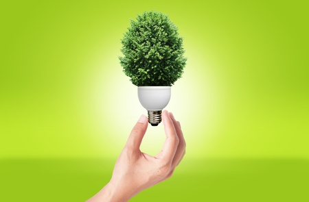 Hand holding Lamp with green tree for green eco concept