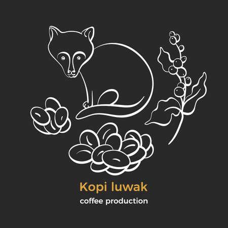 Illustration pour Coffee. Kopi luwak. Natural rich aroma drink. Art line sketch, set of bean, branch, animal civet. Indonesia fermented bio product. Farm expensive food. Group isotates - image libre de droit