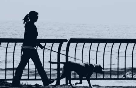 silhouette of girl walking dog