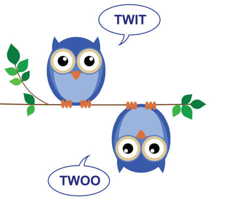 Owls sat on a branch calling Twit Twoo
