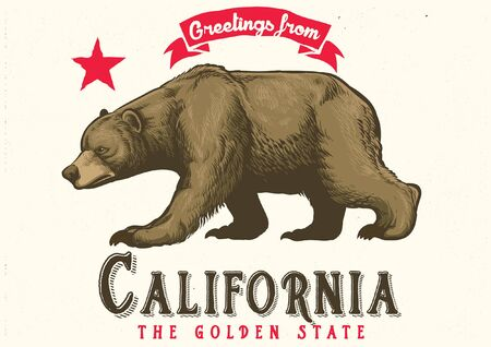 Illustration for hand drawn of californian brown bear - Royalty Free Image