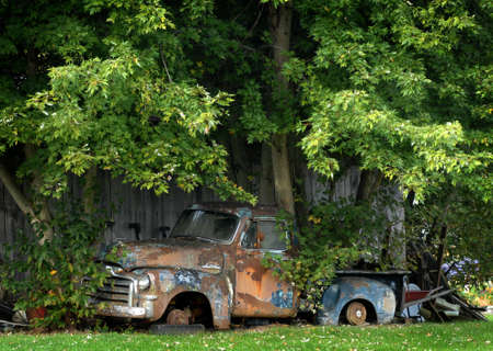 A tree grows through the bed of a truck in Wears Valley, Tennessee.
