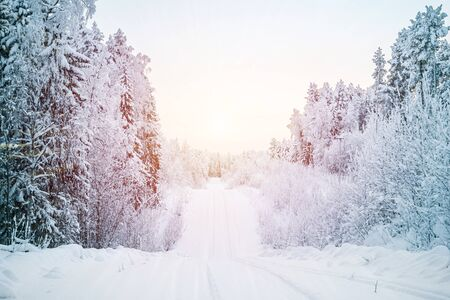 Photo for Beautiful fabulous winter landscape, the road going through the forest, everything is covered with snow. - Royalty Free Image