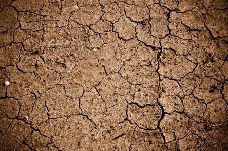 Dried Cracked Dirt  or Mud Background
